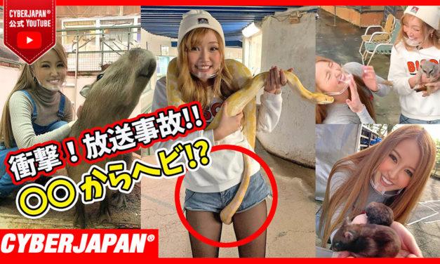 【公式】カピバラやヘビに囲まれ渡辺シスターズが大興奮!?放送事故を起こすヘビ